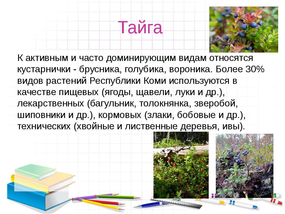 Тайга К активным и часто доминирующим видам относятся кустарнички - брусника,...