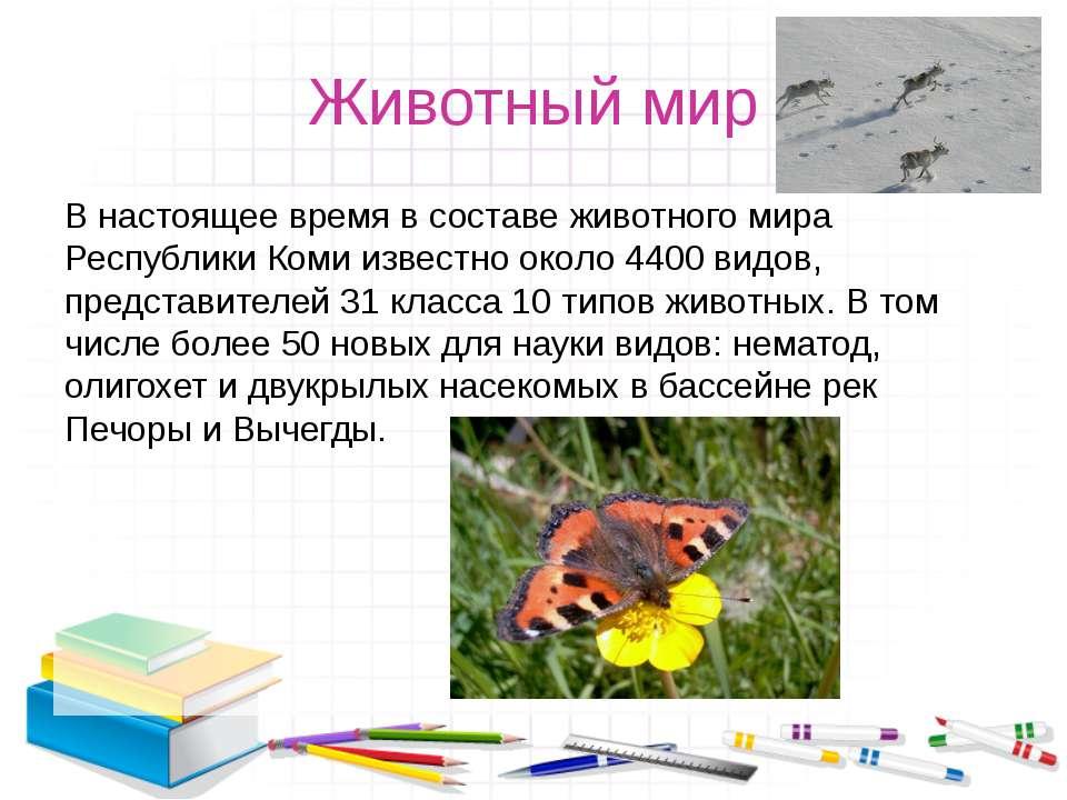 Животный мир В настоящее время в составе животного мира Республики Коми извес...