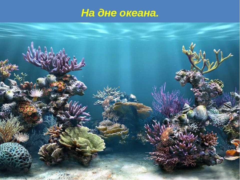 На дне океана.