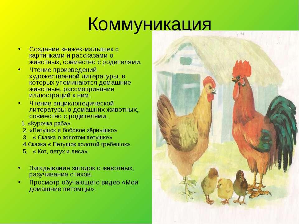Коммуникация Создание книжек-малышек с картинками и рассказами о животных, со...