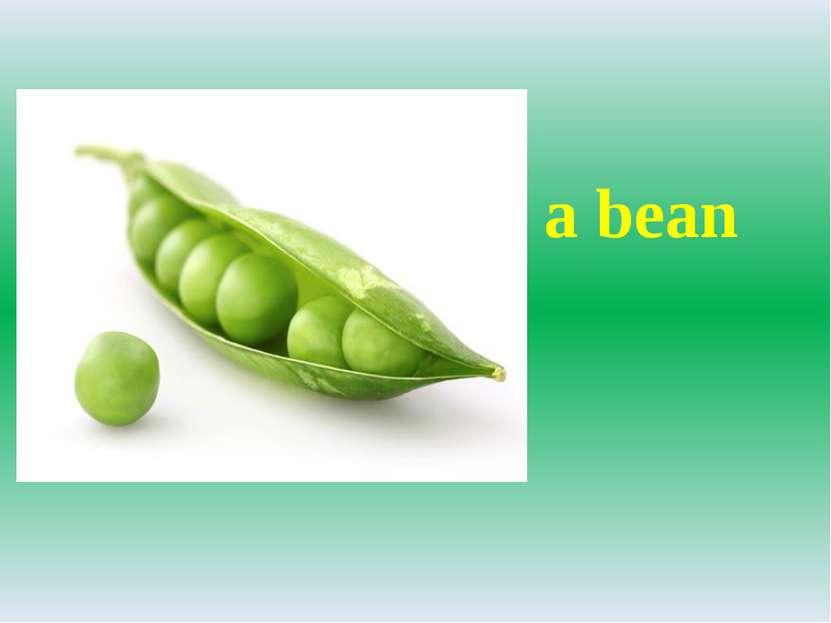 a bean