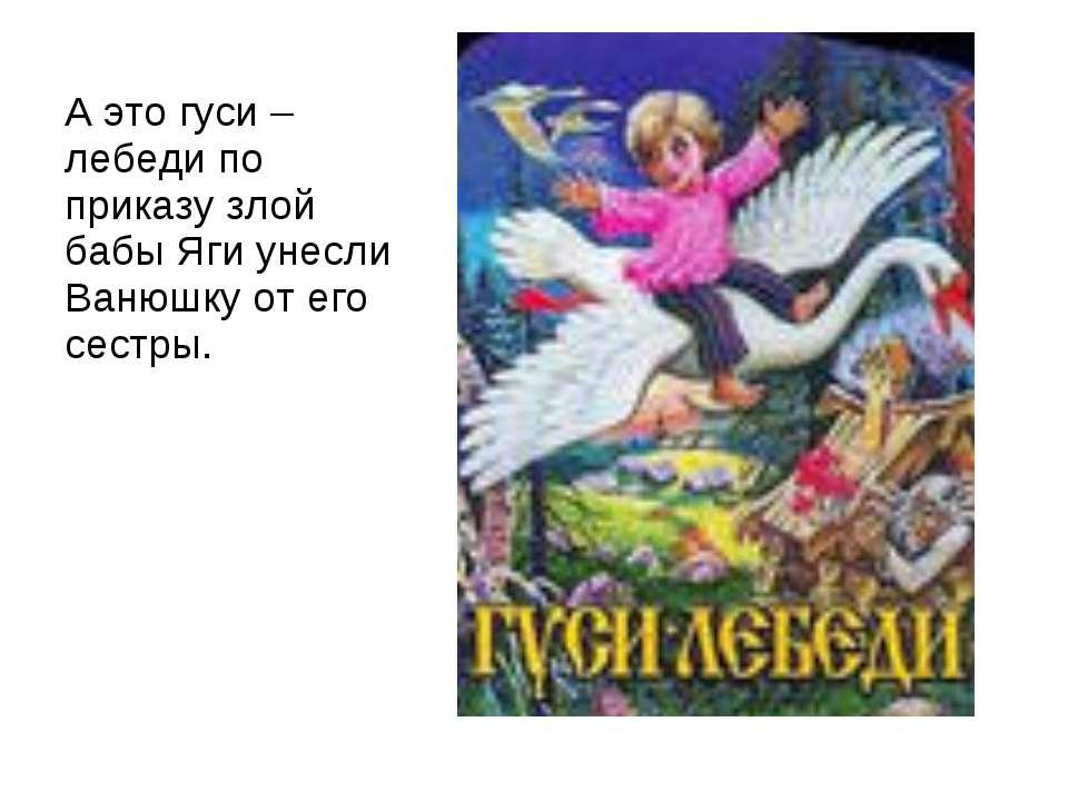 А это гуси – лебеди по приказу злой бабы Яги унесли Ванюшку от его сестры.
