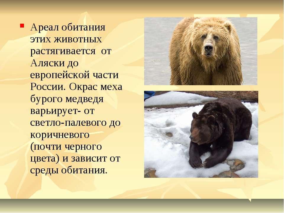 Ареал обитания этих животных растягивается от Аляски до европейской части Рос...