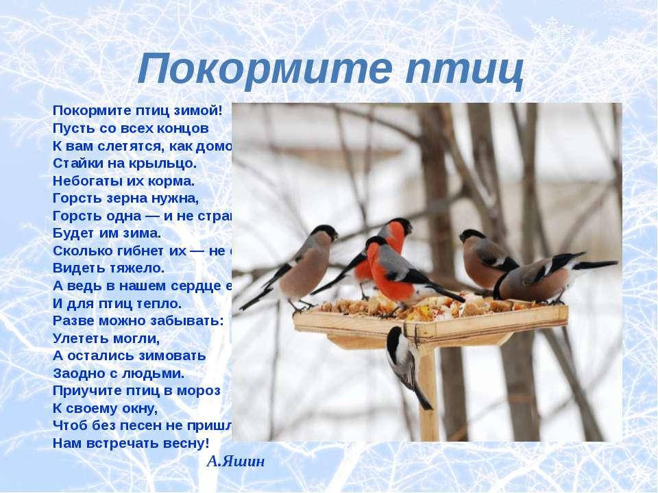 Покормите птиц зимой! Покормите птиц зимой! Пусть со всех концов К вам слетят...