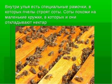 Внутри улья есть специальные рамочки, в которых пчелы строят соты. Соты похож...