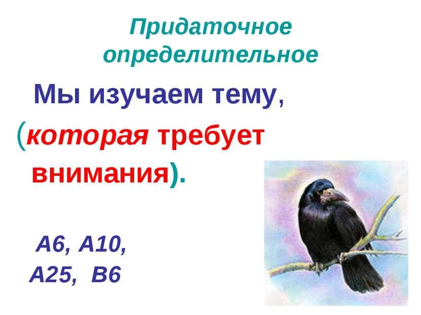 Придаточное определительное Мы изучаем тему, (которая требует внимания). А6, ...