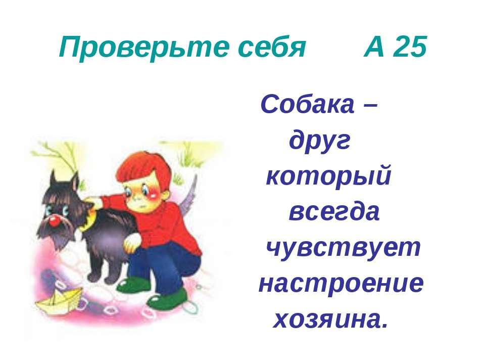 Проверьте себя А 25 Собака – друг который всегда чувствует настроение хозяина.