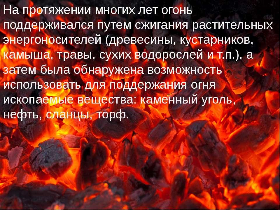 На протяжении многих лет огонь поддерживался путем сжигания растительных энер...