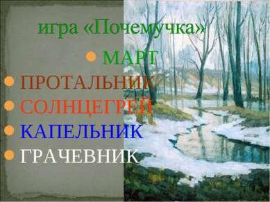 МАРТ ПРОТАЛЬНИК СОЛНЦЕГРЕЙ КАПЕЛЬНИК ГРАЧЕВНИК