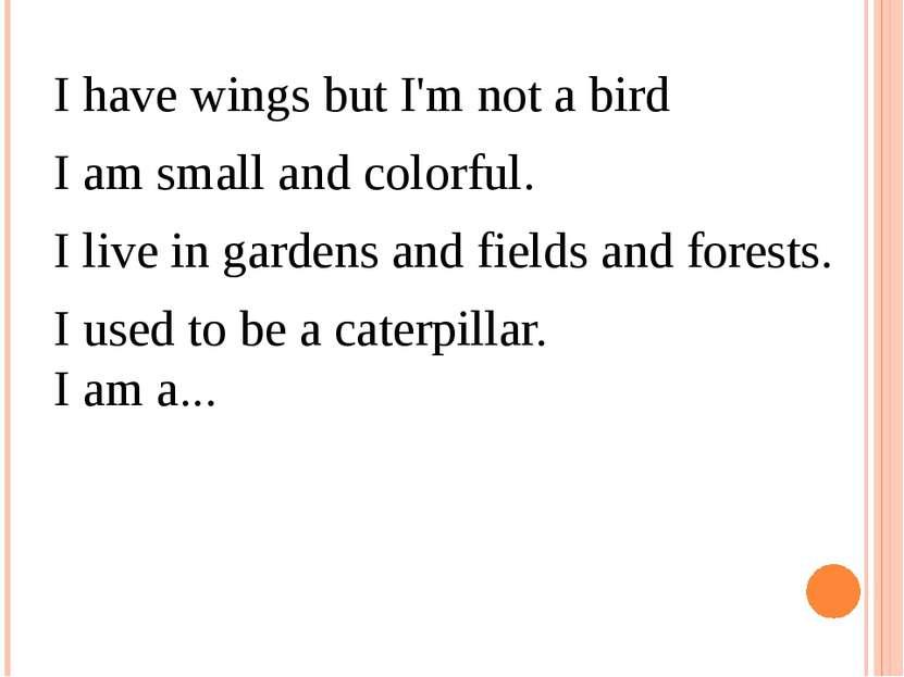 I have wings but I'm not a bird I am small and colorful. I live in gardens ...