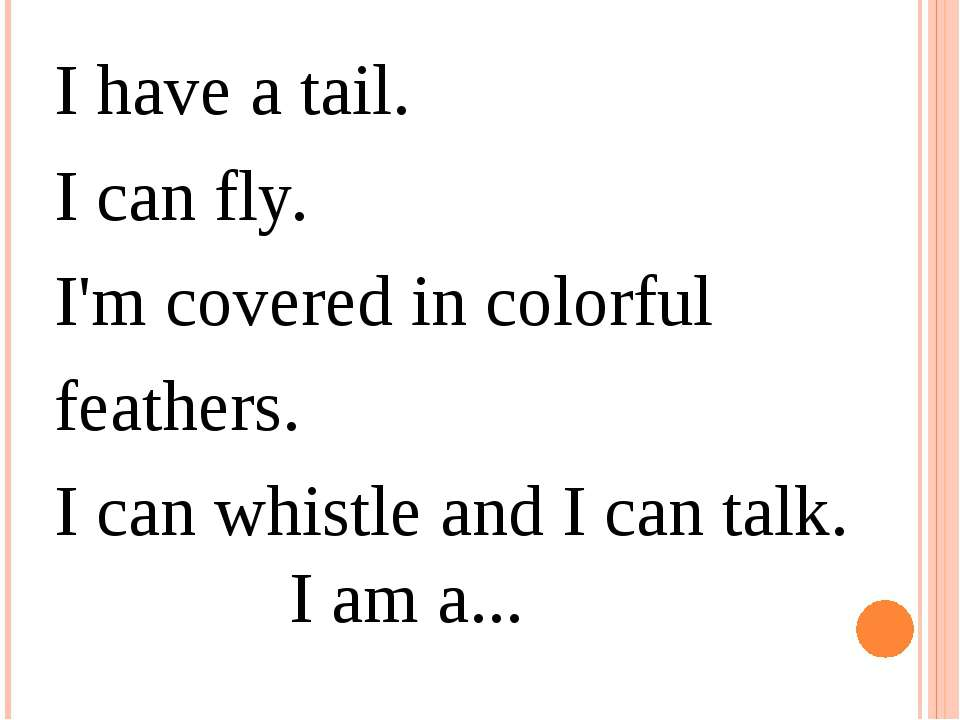 I have a tail.  I can fly.  I'm covered in colorful feathers.  I can whistle ...