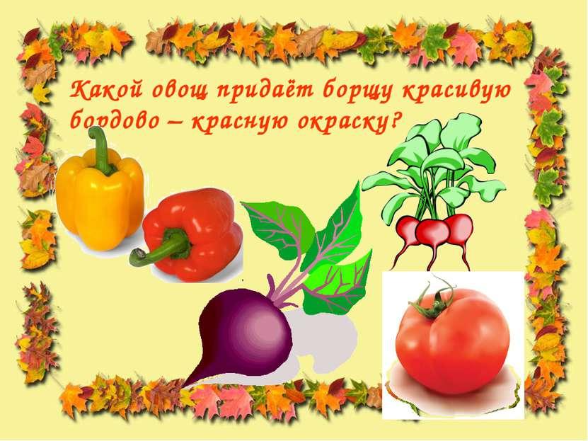Какой овощ придаёт борщу красивую бордово – красную окраску?
