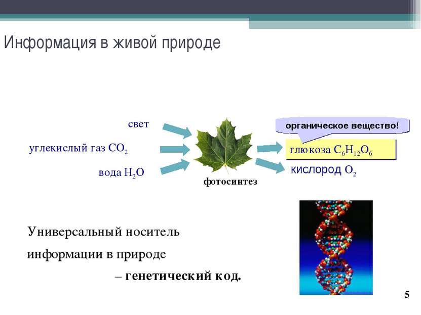 * Информация в живой природе Универсальный носитель информации в природе – ге...