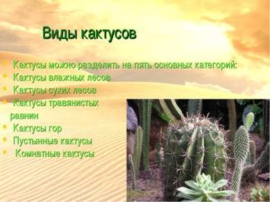Виды кактусов Кактусы можно разделить на пять основных категорий: Кактусы вла...