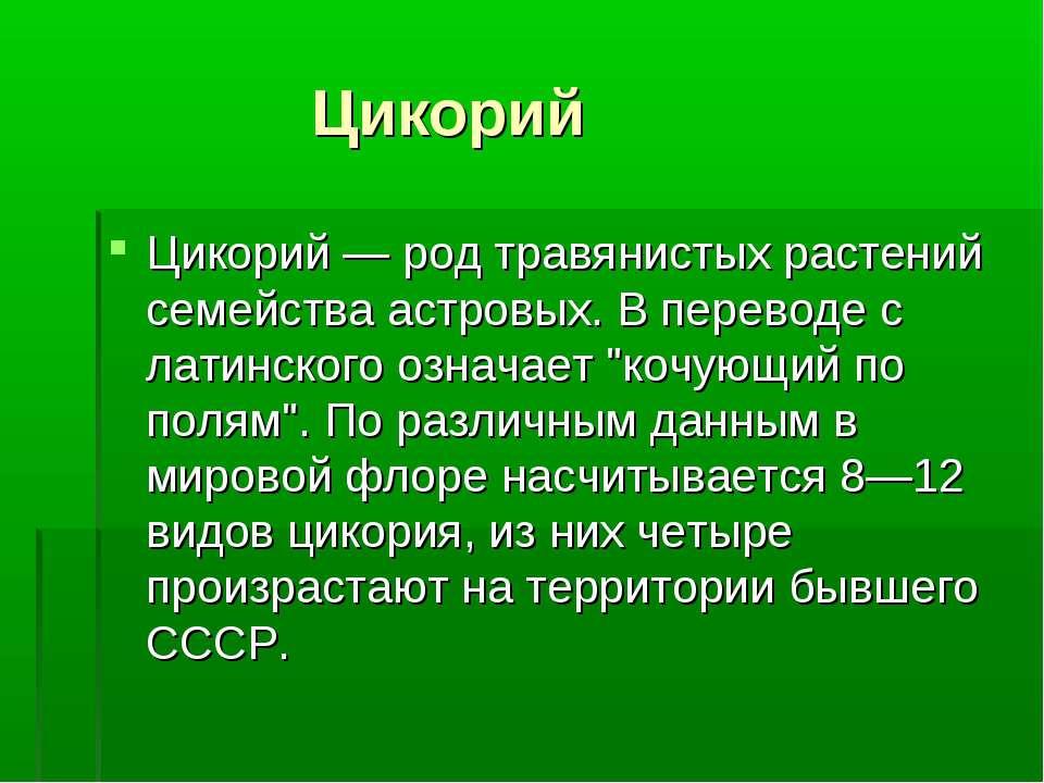 Цикорий Цикорий — род травянистых растений семейства астровых. В переводе с л...