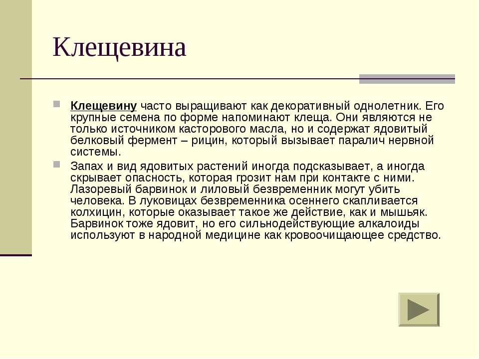 Клещевина Клещевину часто выращивают как декоративный однолетник. Его крупные...