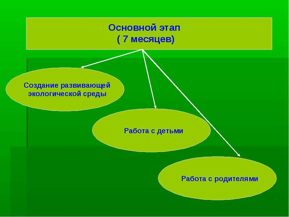 Основной этап ( 7 месяцев) Создание развивающей экологической среды Работа с ...