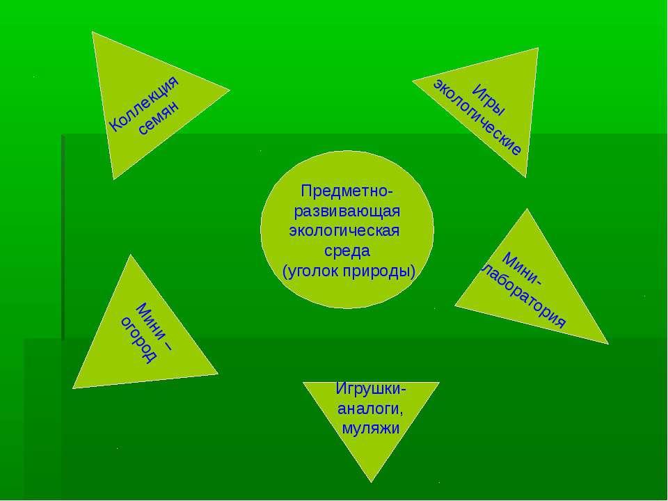 Предметно- развивающая экологическая среда (уголок природы) Мини – огород Кол...