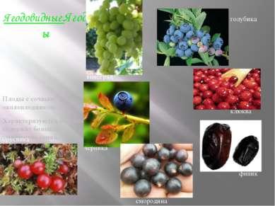 Ягодовидные.Ягоды Плоды с сочным околоплодником. Характеризуются тем, что сод...