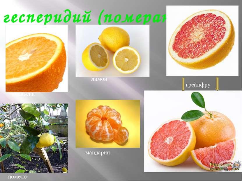 гесперидий (померанец) апельсин помело лимон грейпфрут мандарин