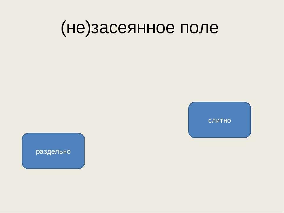 (не)засеянное поле слитно раздельно