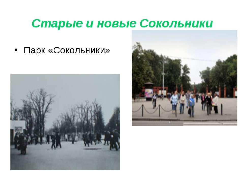 Старые и новые Сокольники Парк «Сокольники»