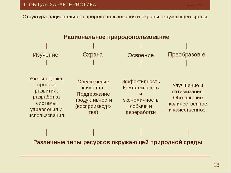 1. ОБЩАЯ ХАРАКТЕРИСТИКА. Калмыков Г.А. 18 Структура рационального природополь...