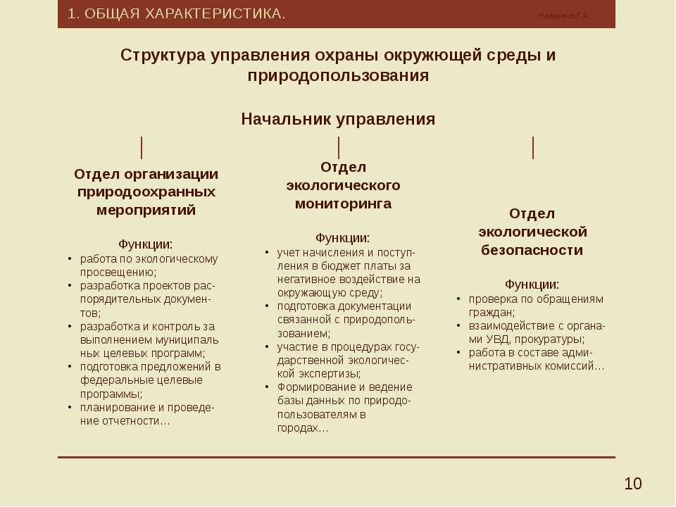 1. ОБЩАЯ ХАРАКТЕРИСТИКА. Калмыков Г.А. 10 Структура управления охраны окружющ...