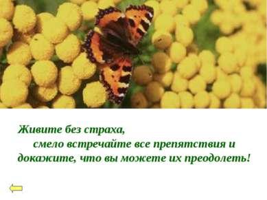 Живите без страха, смело встречайте все препятствия и докажите, что вы можете...