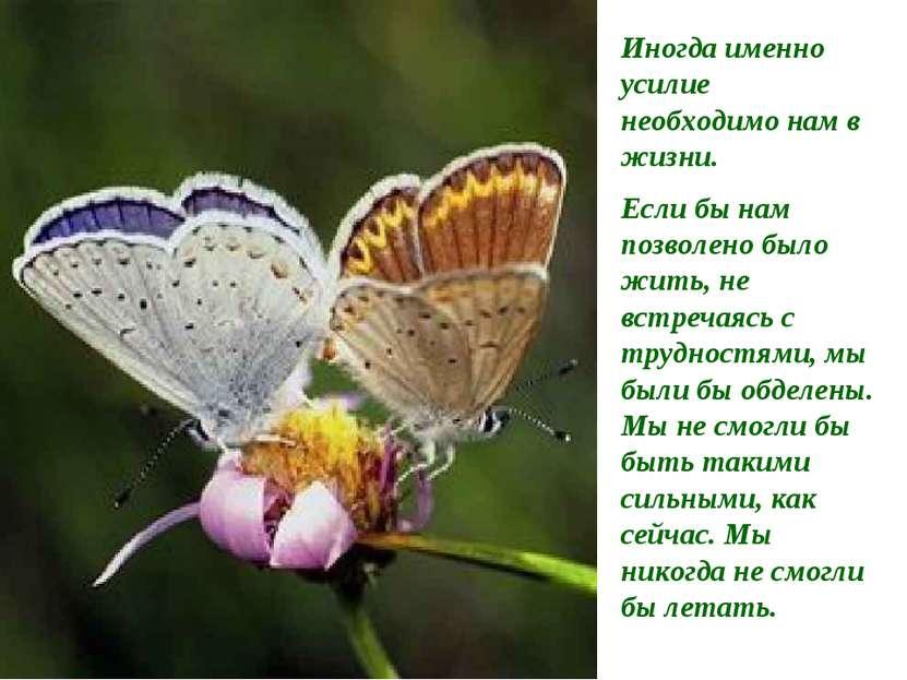 Иногда именно усилие необходимо нам в жизни. Если бы нам позволено было жить,...