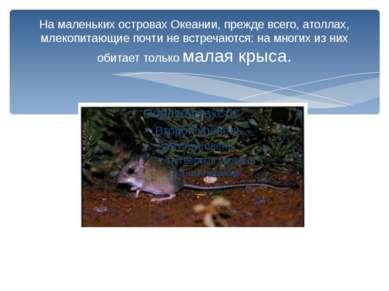 На маленьких островах Океании, прежде всего, атоллах, млекопитающиепочти не ...