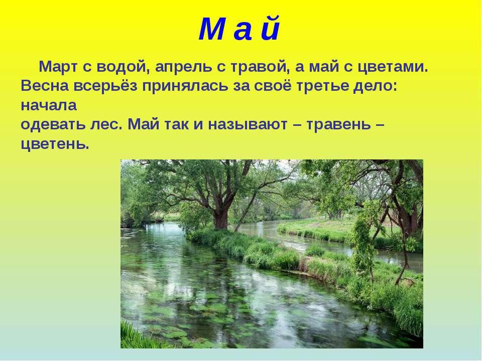 М а й Март с водой, апрель с травой, а май с цветами. Весна всерьёз принялась...