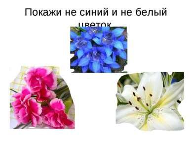 Покажи не синий и не белый цветок