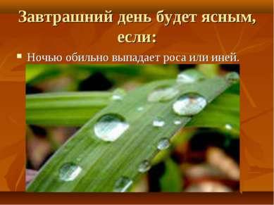 Завтрашний день будет ясным, если: Ночью обильно выпадает роса или иней.