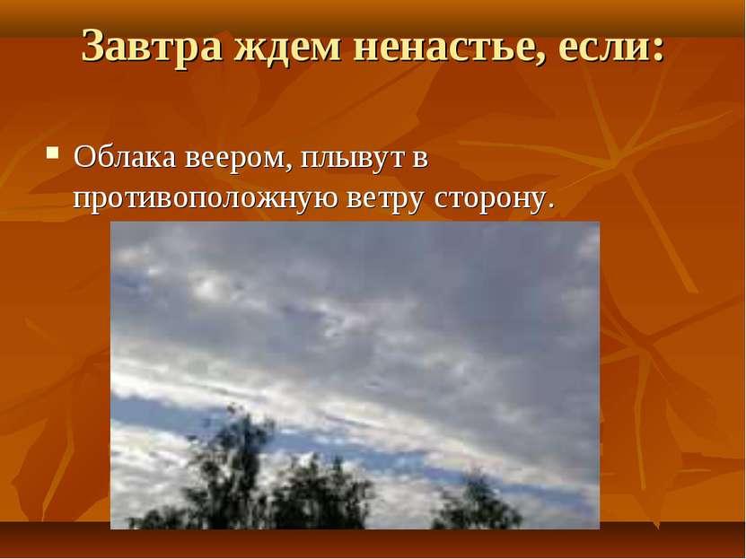 Завтра ждем ненастье, если: Облака веером, плывут в противоположную ветру сто...