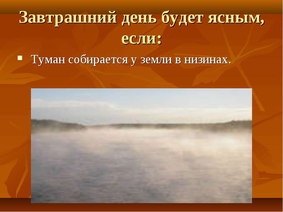 Завтрашний день будет ясным, если: Туман собирается у земли в низинах.