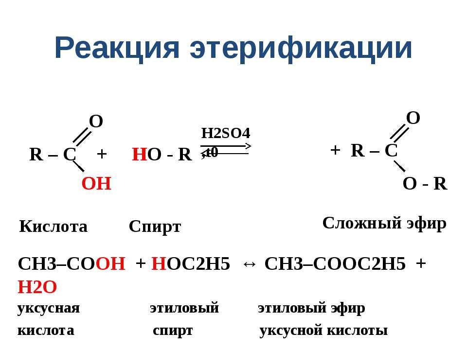 Реакция этерификации R – C + HO - R H2SO4 ,t0 O ОH OH H Кислота Спирт Сложный...