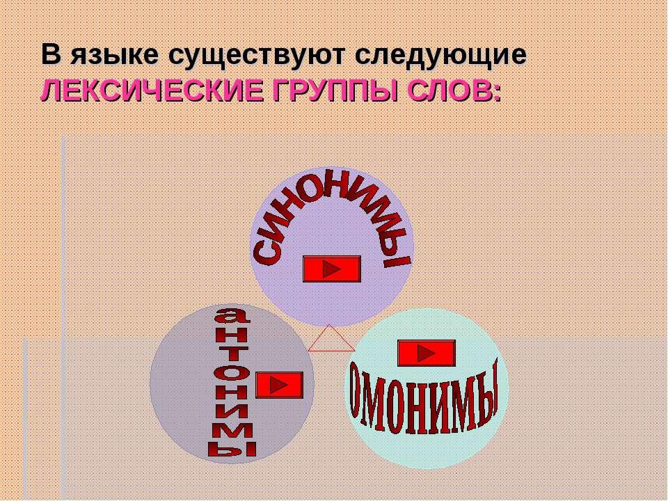 В языке существуют следующие ЛЕКСИЧЕСКИЕ ГРУППЫ СЛОВ: