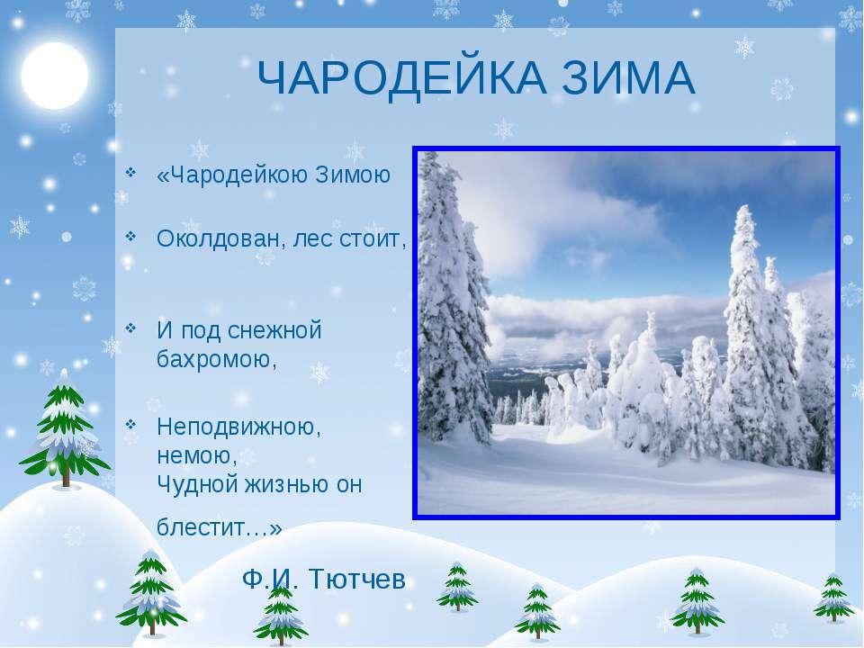 ЧАРОДЕЙКА ЗИМА «Чародейкою Зимою Околдован, лес стоит, И под снежной бахромою...