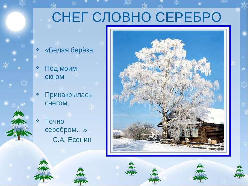 СНЕГ СЛОВНО СЕРЕБРО «Белая берёза Под моим окном Принакрылась снегом, Точно с...