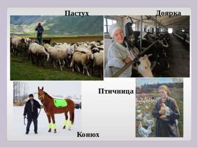 Пастух Доярка Конюх Птичница