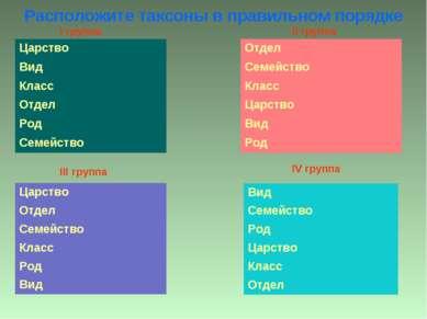 Расположите таксоны в правильном порядке IV группа III группа I группа II группа
