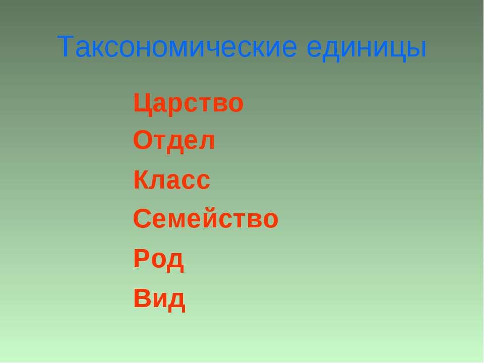Таксономические единицы