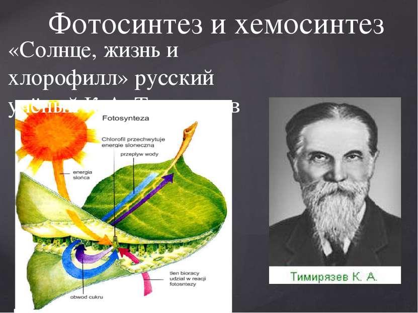 Фотосинтез и хемосинтез «Солнце, жизнь и хлорофилл» русский учёный К.А. Тимир...