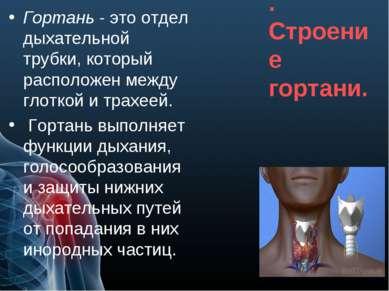 Гортань. Строение гортани. Гортань - это отдел дыхательной трубки, который ра...