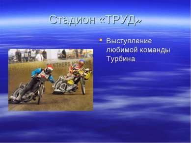 Стадион «ТРУД» Выступление любимой команды Турбина
