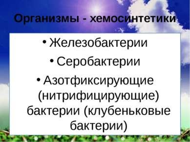 Организмы - хемосинтетики Железобактерии Серобактерии Азотфиксирующие (нитриф...