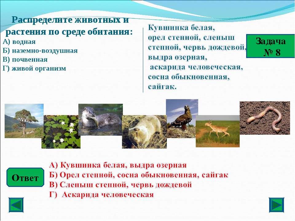 Ответ Задача № 8 Распределите животных и растения по среде обитания: А) водна...