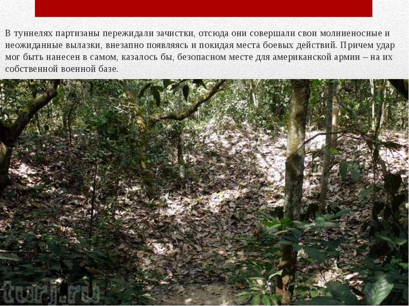 В туннелях партизаны пережидали зачистки, отсюда они совершали свои молниенос...
