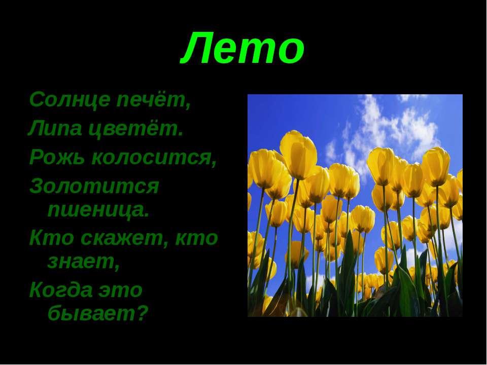 Лето Солнце печёт, Липа цветёт. Рожь колосится, Золотится пшеница. Кто скажет...